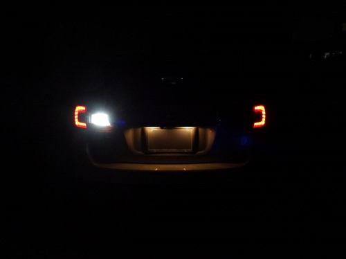 backlamp (1)